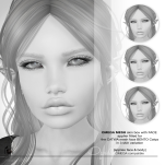 vendor-POSTER-Opal-grey-brows